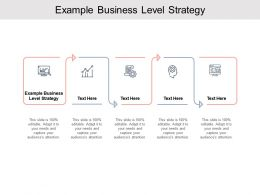 Example Business Level Strategy Ppt Powerpoint Presentation Infographics Good Cpb