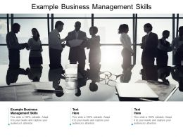 Example Business Management Skill Ppt Powerpoint Presentation Icon Introduction Cpb