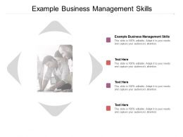 Example Business Management Skills Ppt Powerpoint Presentation Pictures Diagrams Cpb