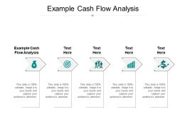 Example Cash Flow Analysis Ppt Powerpoint Presentation Slides Layout Cpb