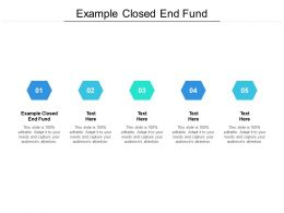 Example Closed End Fund Ppt Powerpoint Presentation Summary Structure Cpb