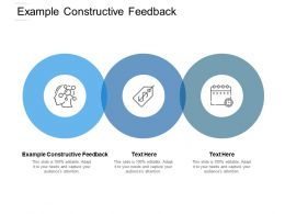 Example Constructive Feedback Ppt Powerpoint Presentation Clipart Cpb