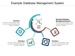 Example Database Management System Ppt Powerpoint Presentation Show Inspiration Cpb