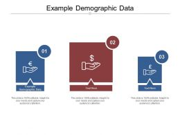 Example Demographic Data Ppt Powerpoint Presentation Styles Grid Cpb