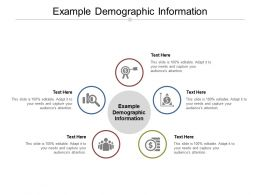 Example Demographic Information Ppt Powerpoint Presentation Model Graphics Cpb