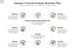 Example Financial Analysis Business Plan Ppt Powerpoint Presentation Model Example Cpb