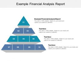 Example Financial Analysis Report Ppt Powerpoint Presentation Show Slideshow Cpb