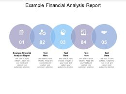 Example Financial Analysis Report Ppt Powerpoint Presentation Styles Tips Cpb