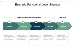 Example Functional Level Strategy Ppt Powerpoint Presentation Model Deck Cpb