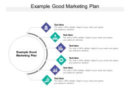 Example Good Marketing Plan Ppt Powerpoint Presentation Professional Cpb