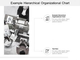 Example Hierarchical Organizational Chart Ppt Powerpoint Presentation Icon Cpb