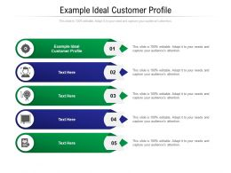Example Ideal Customer Profile Ppt Powerpoint Presentation Show Clipart Cpb