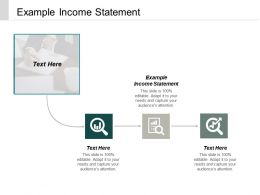 Example Income Statement Ppt Powerpoint Presentation Portfolio Information Cpb
