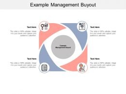Example Management Buyout Ppt Powerpoint Presentation Show Files Cpb