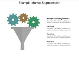 Example Market Segmentation Ppt Powerpoint Presentation Icon Graphics Cpb