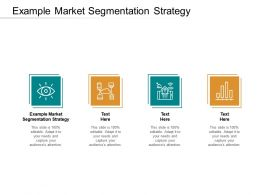 Example Market Segmentation Strategy Ppt Powerpoint Presentation Infographic Template Tips Cpb