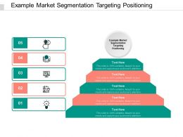 Example Market Segmentation Targeting Positioning Ppt Powerpoint Layouts Grid Cpb