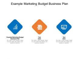 Example Marketing Budget Business Plan Ppt Powerpoint Presentation Icon Cpb