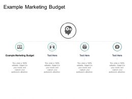 Example Marketing Budget Ppt Powerpoint Presentation Layouts Rules Cpb