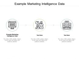 Example Marketing Intelligence Data Ppt Powerpoint Presentation Model Graphic Images Cpb