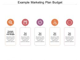 Example Marketing Plan Budget Ppt Powerpoint Presentation Model Example Cpb