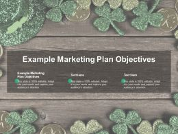 Example Marketing Plan Objectives Ppt Powerpoint Presentation Gallery Icon Cpb