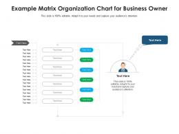 Example Matrix Organization Chart For Business Owner Infographic Template