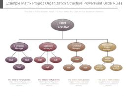 Example Matrix Project Organization Structure Powerpoint Slide Rules