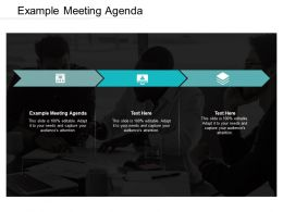 Example Meeting Agenda Ppt Powerpoint Presentation Icon Diagrams Cpb