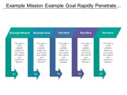 Example Mission Example Goal Rapidly Penetrate Market Segments