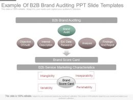Example Of B2b Brand Auditing Ppt Slide Templates