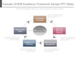Example Of B2b Excellence Framework Sample Ppt Slides