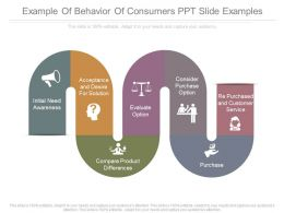 Example Of Behavior Of Consumers Ppt Slide Examples