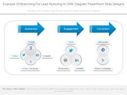 Example Of Branching For Lead Nurturing In Crm Diagram Powerpoint Slide Designs