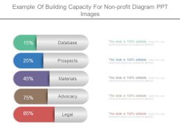 Example Of Building Capacity For Non Profit Diagram Ppt Images