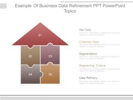 Example Of Business Data Refinement Ppt Powerpoint Topics