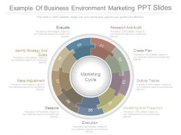 Example Of Business Environment Marketing Ppt Slides