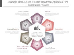 Example Of Business Flexible Roadmap Attributes Ppt Presentation Visuals