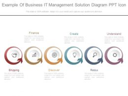 Example Of Business It Management Solution Diagram Ppt Icon