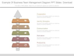 Example Of Business Team Management Diagram Ppt Slides Download