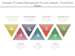 Example Of Capital Management Process Diagram Powerpoint Slides