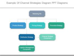 Example Of Channel Strategies Diagram Ppt Diagrams