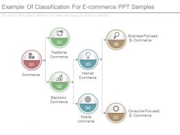 Example Of Classification For E Commerce Ppt Samples