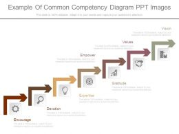 Example Of Common Competency Diagram Ppt Images