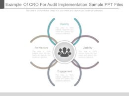 Example Of Cro For Audit Implementation Sample Ppt Files