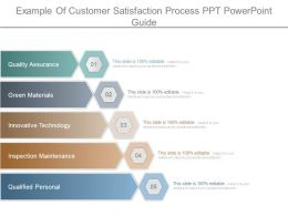 Example Of Customer Satisfaction Process Ppt Powerpoint Guide