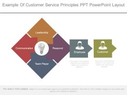 Example Of Customer Service Principles Ppt Powerpoint Layout