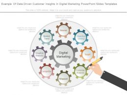 Example Of Data Driven Customer Insights In Digital Marketing Powerpoint Slides Templates