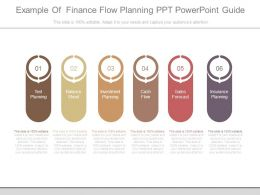 Example Of Finance Flow Planning Ppt Powerpoint Guide
