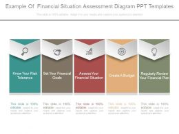 Example Of Financial Situation Assessment Diagram Ppt Templates